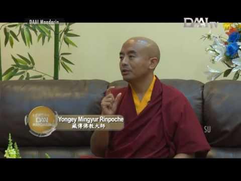 DAAI Mandarin - 大愛與您分享 Wawancara Bersama Yongey Mingyur Rinpoche