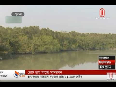 Sundarbans shrinking (09-12-2019) Courtesy: Independent TV