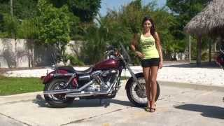 8. Used 2009 Harley Davidson Super Glide  Motorcycles for sale - Ocala, FL