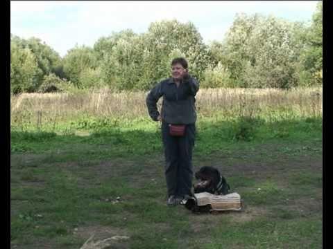 training in Tver