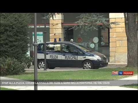 STOP ALLA PUZZA. CHIUDE LA STALLA DEI SUINI A NORD DELLA POSTUMIA | 19/09/2020