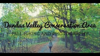 Dundas Valley Conservation Area in the Fall - Panasonic GH4 - Dundas, Ontario, Canada