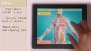 Easy Anatomy 3D(learn anatomy) YouTube video