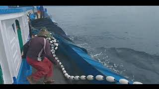 Video Pukat cakalang di laut samalanga MP3, 3GP, MP4, WEBM, AVI, FLV Mei 2019