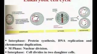Mod-01 Lec-07  Lecture-07-Introduction To Biomaterials