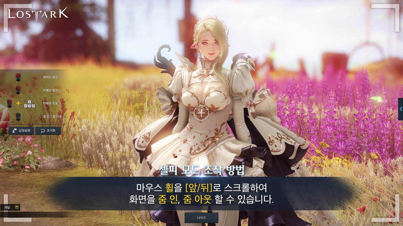 LOST ARK 셀피 모드 안내 (LOST ARK - Selfie Mode Guide)
