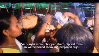 Eco Concept is an organisation based in Assam trying to promote ecologically sound and economically beneficial concepts. Mushroom cultivation is one. This video showcases stories of a few such groups of women in Assam growing mushrooms together with confidence.
