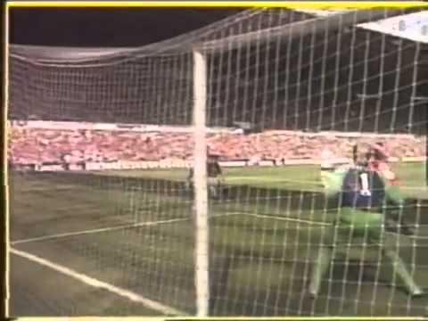 Peter Schmeichel - the best goalkeeper - best saves (видео)
