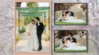 1st Wedding Anniversary of HUY KHANH-YEN OANH