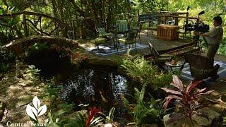 Video Serene Pond Backyard |Barbara and David Hale|Central Texas Gardener MP3, 3GP, MP4, WEBM, AVI, FLV Agustus 2019