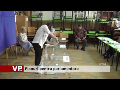 Planuri pentru parlamentare