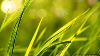 Video Waganci -  Zielona Trawa MP3, 3GP, MP4, WEBM, AVI, FLV Oktober 2018
