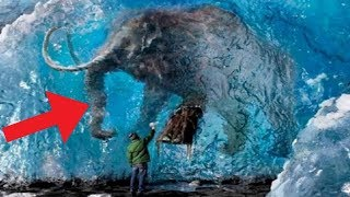 Video Animals Found FROZEN In Ice! MP3, 3GP, MP4, WEBM, AVI, FLV April 2018