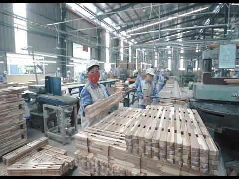 Ngành Gỗ Việt Nam phát triển bền vững để khai thác hiệu quả Hiệp định CPTPP