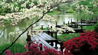 "Video 3 HOURS ""Zen Garden"" 
