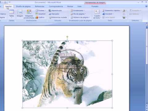 Tutorial de Marca de Agua en Microsoft Office Word