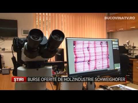 Burse oferite de Holzindustrie Schweighofer