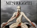 Meshuggah – Dancers To A Discordant System