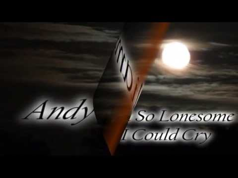 Tekst piosenki Andy Williams - I'm So Lonesome I Could Cry po polsku