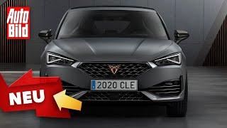 Cupra Leon (2020): Neuvorstellung - Sportwagen - Infos by Auto Bild
