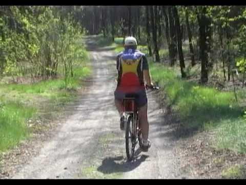 Tekst piosenki Seven - Sexy rower po polsku