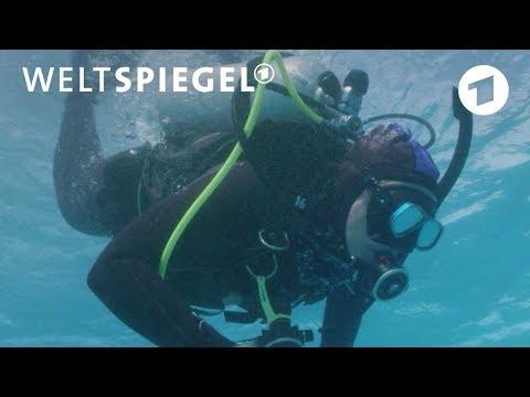 Korallen-Paradies vor dem Kollaps? | Weltspiegel