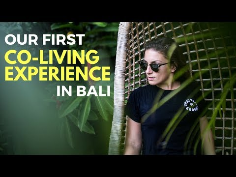 Co- Living In Ubud Bali - The Bali Travel Vlog - Trip Of A Lifetime