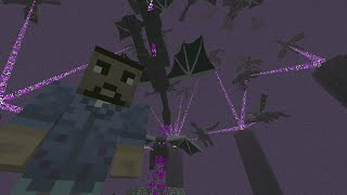 Minecraft Xbox One Edition - How To Duplicate Ender Dragons - Glitch Tutorial