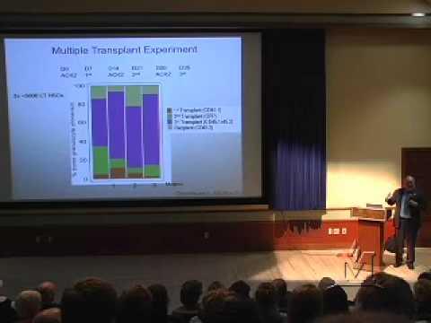 Normalen und neoplastischen Stem Cells - A Public Kopriva Seminar von Dr. Irving Weissman