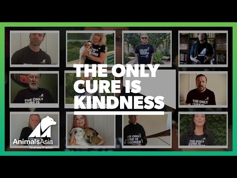 The Only Cure is Kindness