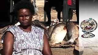 Video The Kenyan Fishing Community Ravaged By AIDS MP3, 3GP, MP4, WEBM, AVI, FLV Desember 2018