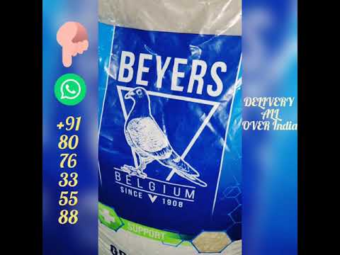 Beyers Belgium Grit Extra 20kg bag