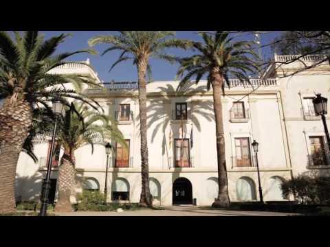 Оптимизакё́н дел консамо де агаа – Агаас де Валенкя и Водафоне