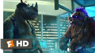 Teenage Mutant Ninja Turtles 2  2016    Bebop   Rocksteady Scene  3 10    Movieclips