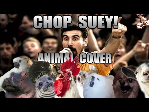 Animals Sing System Of A Down s Chop Suey
