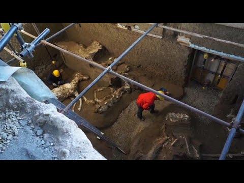 Τα απολιθωμένα άλογα της Πομπηίας