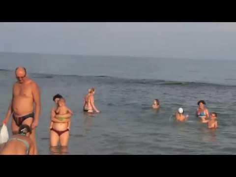 Крым Феодосия поселок Приморский дельфины у пляжа