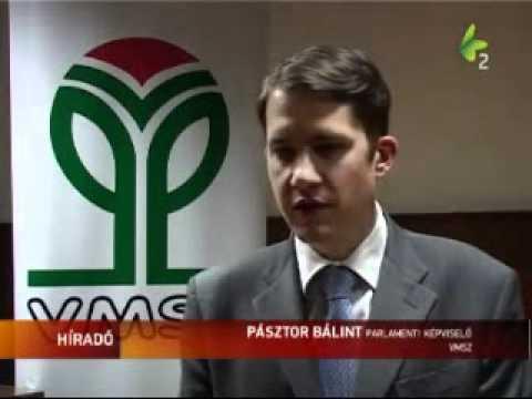 Híradó - Megalakult a VMSZ belgrádi alapszervezete-cover
