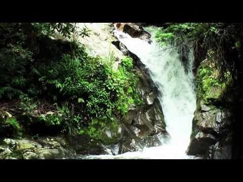 Video of EL Mirador Ecoturistico