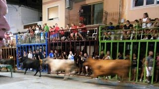 Calpe Spain  city photo : Calpe Bull Run Spain 2016