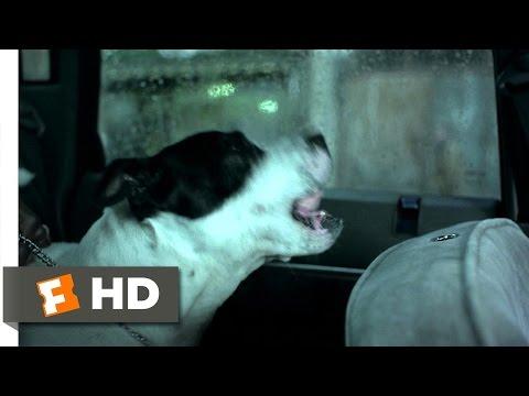 Squeaky Dog - Snatch. (3/8) Movie CLIP (2000) HD
