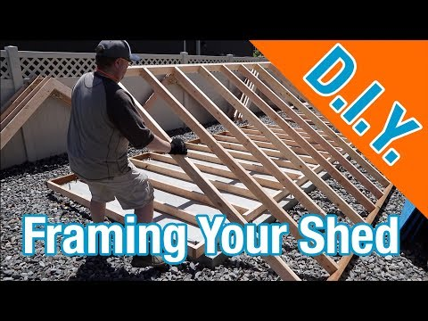 How to frame a shed: How To Build A Shed ep 9