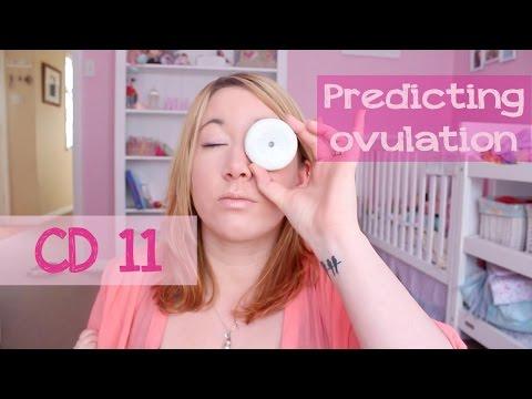 Predicting Ovulation - live OPK & Saliva ovulation test | CD 11