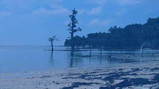 Sorong Indonesia  City new picture : Tanjung Kasuari Beach, Sorong Indonesia | Pantai Tanjung Kasuari, Sorong Indonesia