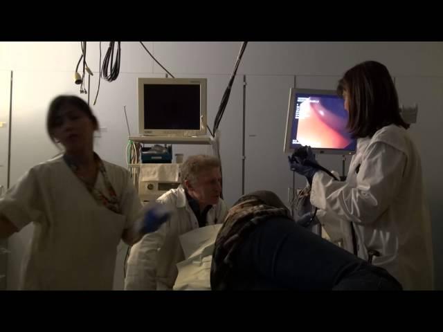 Colposcopie pendant la grossesse Docteur