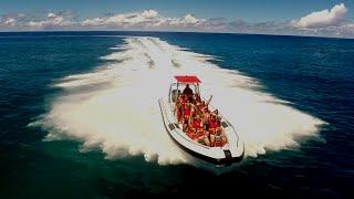 Rarotonga's Rollercoaster Ride!