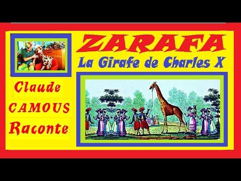 ZARAFA « Claude Camous Raconte » La Girafe de Charles X
