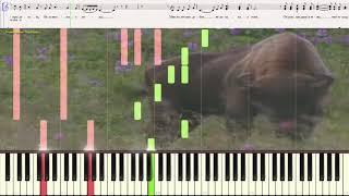 Беловежская пуща (До мажор) - Детский хор (Ноты и Видеоурок для фортепиано) (piano cover)
