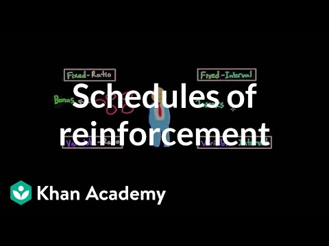 Operant Conditioning Schedules Of Reinforcement Video Khan Academy