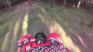 9. Honda trx300x Cruising around